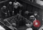 Image of haul bombs Germany, 1917, second 5 stock footage video 65675025844