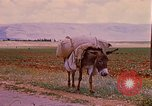 Image of scenes of a road Israel, 1968, second 7 stock footage video 65675025901