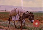 Image of scenes of a road Israel, 1968, second 9 stock footage video 65675025901
