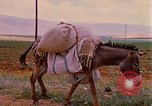 Image of scenes of a road Israel, 1968, second 10 stock footage video 65675025901