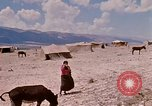 Image of Arab refugees Israel, 1968, second 6 stock footage video 65675025902
