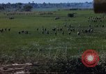 Image of ARVN operation in Vietnam War Vietnam, 1967, second 6 stock footage video 65675025940
