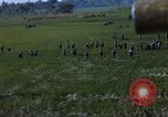 Image of ARVN operation in Vietnam War Vietnam, 1967, second 7 stock footage video 65675025940