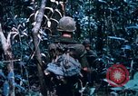Image of 4th Infantry Division Vietnam, 1969, second 3 stock footage video 65675025953