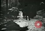 Image of Aftermath of the battle of Caporetto in World War I Italy, 1917, second 3 stock footage video 65675026036