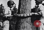 Image of Japanese American recruits Mississippi United States USA, 1942, second 9 stock footage video 65675026133