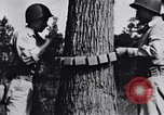Image of Japanese American recruits Mississippi United States USA, 1942, second 11 stock footage video 65675026133