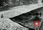 Image of US 139th Infantry Regiment France, 1918, second 11 stock footage video 65675026348