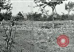 Image of American Expeditionary Force Cemeteries France, 1918, second 1 stock footage video 65675026363