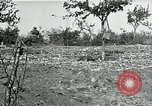 Image of American Expeditionary Force Cemeteries France, 1918, second 2 stock footage video 65675026363