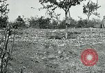 Image of American Expeditionary Force Cemeteries France, 1918, second 3 stock footage video 65675026363