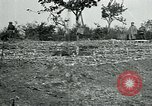 Image of American Expeditionary Force Cemeteries France, 1918, second 6 stock footage video 65675026363