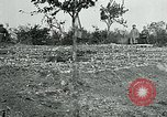 Image of American Expeditionary Force Cemeteries France, 1918, second 7 stock footage video 65675026363
