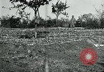 Image of American Expeditionary Force Cemeteries France, 1918, second 9 stock footage video 65675026363
