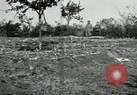 Image of American Expeditionary Force Cemeteries France, 1918, second 10 stock footage video 65675026363
