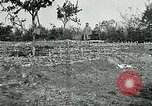 Image of American Expeditionary Force Cemeteries France, 1918, second 11 stock footage video 65675026363