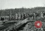 Image of World War 1 American Expeditionary Force Cemetery Bois de Etraye France, 1918, second 1 stock footage video 65675026366