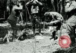 Image of Aisne Marne Operation France, 1918, second 1 stock footage video 65675026398
