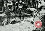 Image of Aisne Marne Operation France, 1918, second 2 stock footage video 65675026398