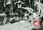 Image of Aisne Marne Operation France, 1918, second 3 stock footage video 65675026398