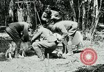 Image of Aisne Marne Operation France, 1918, second 6 stock footage video 65675026398