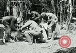 Image of Aisne Marne Operation France, 1918, second 7 stock footage video 65675026398