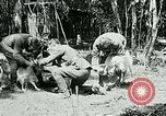 Image of Aisne Marne Operation France, 1918, second 8 stock footage video 65675026398