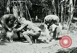 Image of Aisne Marne Operation France, 1918, second 10 stock footage video 65675026398