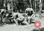 Image of Aisne Marne Operation France, 1918, second 12 stock footage video 65675026398