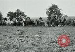 Image of Aisne Marne Operation France, 1918, second 8 stock footage video 65675026399