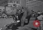 Image of Ringling Brothers circus New York United States USA, 1967, second 4 stock footage video 65675026451