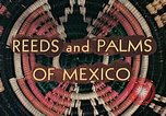Image of reed and palm Mexico, 1941, second 10 stock footage video 65675026499