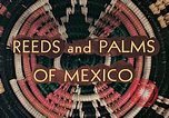 Image of reed and palm Mexico, 1941, second 11 stock footage video 65675026499