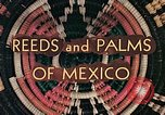 Image of reed and palm Mexico, 1941, second 12 stock footage video 65675026499
