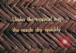 Image of reed and palm Mexico, 1941, second 12 stock footage video 65675026501