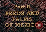 Image of reed and palm Mexico, 1941, second 3 stock footage video 65675026505