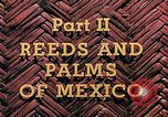 Image of reed and palm Mexico, 1941, second 4 stock footage video 65675026505