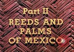 Image of reed and palm Mexico, 1941, second 8 stock footage video 65675026505