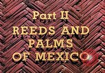 Image of reed and palm Mexico, 1941, second 10 stock footage video 65675026505
