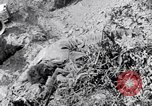 Image of Korean War atrocity Korea, 1952, second 6 stock footage video 65675026521