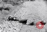 Image of Korean War atrocity Korea, 1952, second 9 stock footage video 65675026521