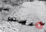 Image of Korean War atrocity Korea, 1952, second 11 stock footage video 65675026521