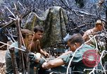 Image of Operation Jeb Stuart III Vietnam, 1968, second 6 stock footage video 65675026529