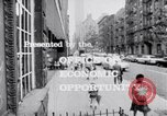 Image of Operation Head Start United States USA, 1966, second 10 stock footage video 65675026691