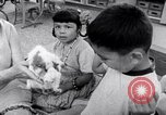 Image of Operation Head Start United States USA, 1966, second 8 stock footage video 65675026696