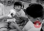 Image of Operation Head Start United States USA, 1966, second 11 stock footage video 65675026696