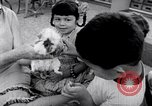Image of Operation Head Start United States USA, 1966, second 12 stock footage video 65675026696