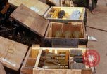 Image of Captured ammunition Vietnam, 1967, second 5 stock footage video 65675026719
