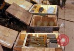 Image of Captured ammunition Vietnam, 1967, second 7 stock footage video 65675026719