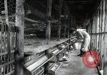 Image of Fulbright Program Japan, 1961, second 5 stock footage video 65675026749